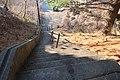 Stairs in Parkersburg (25694504691).jpg