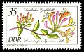 Stamps of Germany (DDR) 1981, MiNr 2577.jpg