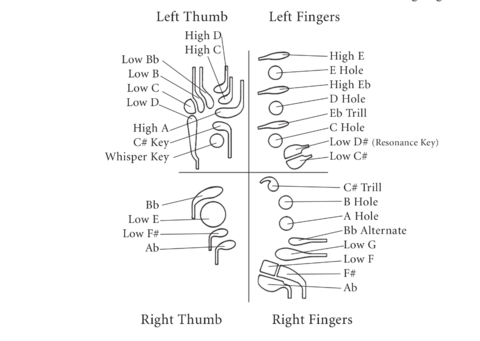 diagram describing the keys on a bassoon