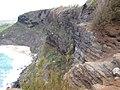 Starr-130318-2729-Casuarina equisetifolia-habitat view Red footed Booby colony-Kilauea Pt NWR-Kauai (25114678971).jpg