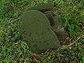 Stary cmentarz żydowski w Lublinie macewy7.jpg