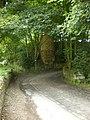 Steele Lane - geograph.org.uk - 1387479.jpg