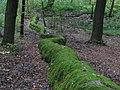 Steinerne Rinne Erasbach-3.JPG