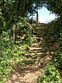 Steps to stile near Blackawton - geograph.org.uk - 1323568.jpg