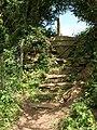 Steps to stile near Blackawton - geograph.org.uk - 1323568.jpg