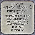 Stolperstein für Jozsefne Molnar (Budapest).jpg
