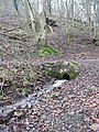 Stream piped under the footpath - geograph.org.uk - 649971.jpg