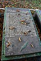 Subbotsi Brothery Graves of WW2 Warriors-Fellow-Villagers 04 Details Village Centre near Stores (YDS 2765).jpg