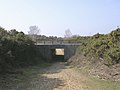 Subway under the A35 on Markway Hill, New Forest - geograph.org.uk - 24969.jpg
