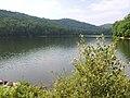 Summit Lake ,WV summertime.JPG