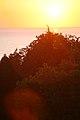 Sunset light (3338433654).jpg