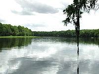 Suwannee River.jpg