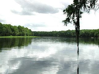 Suwannee River 396km (246mi) river in Florida and Georgia, USA