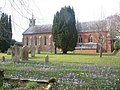 Sway, churchyard crocuses - geograph.org.uk - 1184212.jpg