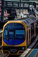 Sydney Trains H14 Set.jpg