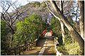 Tamagawadai park nijibashi 0086.jpg