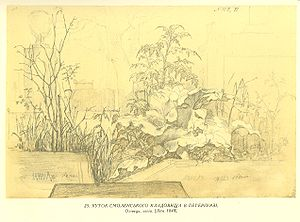Смоленського кладовища в петербурзі