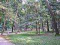 Tarnow park Kwiatkowskiego 1.jpg
