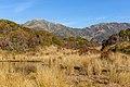Tarns by Yeats Ridge Hut, West Coast, New Zealand 16.jpg