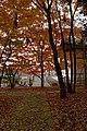 Tatsuno Castle14n4592.jpg