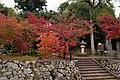 Tenryu-ji (3261761583).jpg