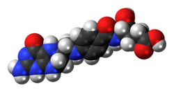 Space-filling model of the tetrahydrofolic acid molecule