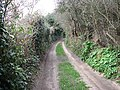 Thain's Lane - geograph.org.uk - 723923.jpg