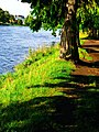 The Bank At The River Ness - panoramio.jpg