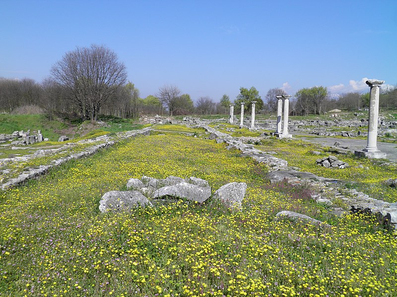 File:The Forum, Philippi (7272544070).jpg