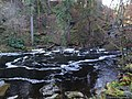 The Hermitage Dunkeld Scotland (16).jpg