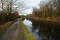 The Leeds Liverpool Canal below Haigh Upper Plantations - geograph.org.uk - 1706757.jpg