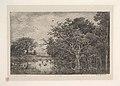 The Marshes MET DP822218.jpg