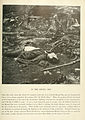The Photographic History of The Civil War Volume 02 Page 255.jpg