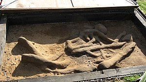 Burial in Anglo-Saxon England - Inhumation at Sutton Hoo under archaeological excavation.