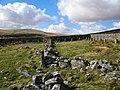 The Scotch Sheepfold - Dartmoor - geograph.org.uk - 149620.jpg