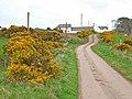 The road to Culgrange - geograph.org.uk - 318811.jpg