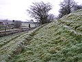 The slope leading to the standing stone - geograph.org.uk - 90676.jpg
