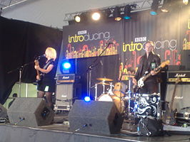 The Joy Formidable in 2008