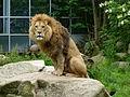 Tierpark München 2014 101.JPG