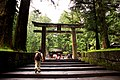 Torii to Tosho-gu shrine, Nikko (3810303156).jpg