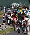 Tour de France 2010, eerste peloton op aubisque (14683957057).jpg