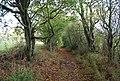 Track near Pebsham Water Treatment Works - geograph.org.uk - 1578808.jpg