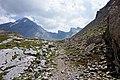 Trail and Rinderhorn.jpg