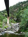 Trail to Lago do Fogo, São Miguel Island, Azores - panoramio - Eduardo Manchon (2).jpg