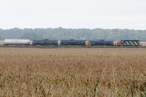 Train in corn field (15320086036)