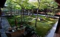 Tranquility in a Japanese garden of the Ken-nin-ji zen temple - Flickr - odako1.jpg