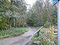 TransPennine Trail - geograph.org.uk - 1024731.jpg