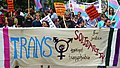 Trans Solidarity Rally and March 55437 (17609788469).jpg