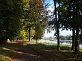 TrebsenSchloßpark-Mulde.JPG