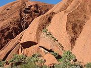 Uluṟu rock formations.